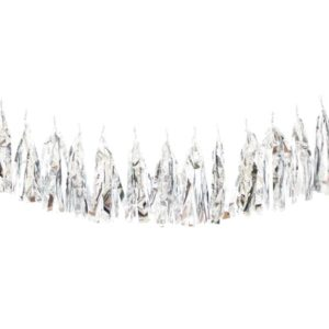 Birthday Party Tassels Metallic Silver