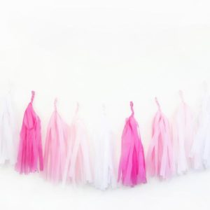 Birthday Party Tassels Pink Ombre