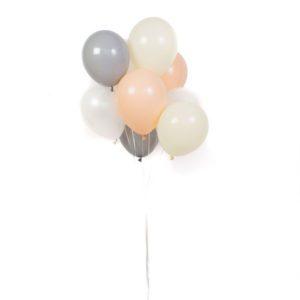 Funlah Baby Hues Balloon Bouquet